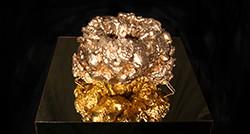 Golden Space Doughnut