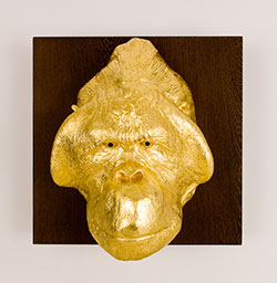 Golden Ape