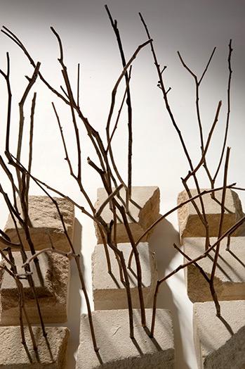 Landscape, 2008