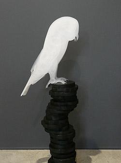 Owl Blind