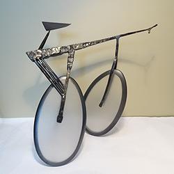 Alberto's bike